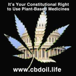 Capitol as Marijuana Leaf